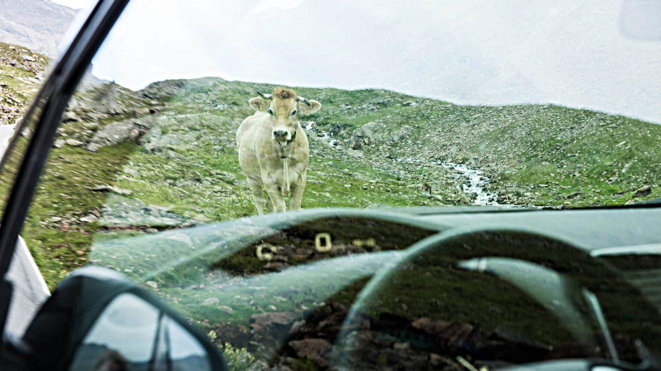 Pause am Wegesrand mit dem Nissan Leaf. Foto: Lina Grün