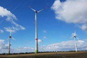 Erneuerbare Energie aus Windkraft. Foto: Mertens